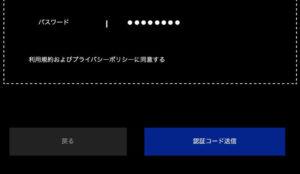 Input content confirmation screen