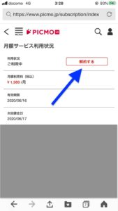 Monthly service usage status