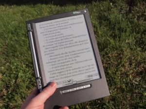 Reading an e-book on the meadow
